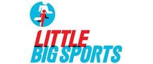 Little Big Sports