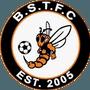 Bradley Stoke Town FC