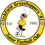 Uckfield Grasshoppers '81 JFC