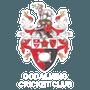 Godalming Cricket Club