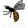Wasps FC - Rugby in West London