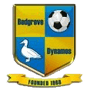 Bedgrove Dynamos Football Club