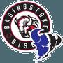 Basingstoke Junior Bison
