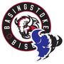 Basingstoke Junior Bison