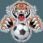 Oakhill Tigers Football Club