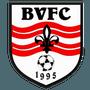 Byfleet Village FC
