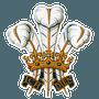 Northchurch Cricket Club