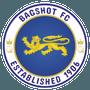 Bagshot F.C.