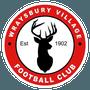 Wraysbury Village Football Club