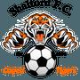 SHALFORD FOOTBALL CLUB