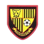 Harold Wood Cougars FC