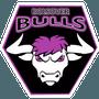 Bolsover Bulls