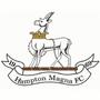 Hampton Magna Athletic FC