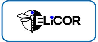 ELICOR Consulting