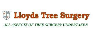 Lloyd's Tree Surgery