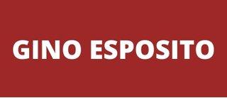 Gino Esposito