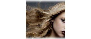Attitude Hair & Design