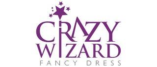 Crazy Wizard Fancy Dress