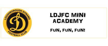 LDJFC Mini Academy