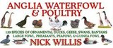 Club Sponsor - Anglia Wildfowl