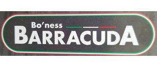 Bo'ness Barracuda