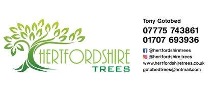Hertfordshire Trees