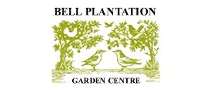 Bell Plantation
