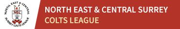 North East & Central Surrey Colts League