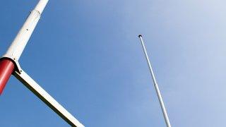Mini Rugby Returns