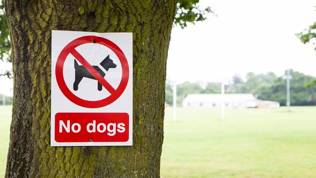 Deer Park - Dogs and smoking rules