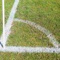 Guildford City vs. Spelthorne Sports