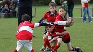 minis rugby 2010