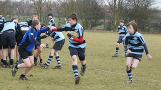 U14s Fenland Barbarians 35 - 10 St Ives