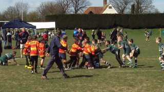 minis at westcliff