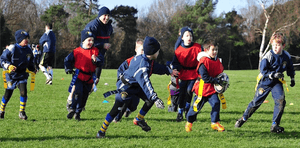 Mini Rugby - New Season starts Sept 8 - How to Join