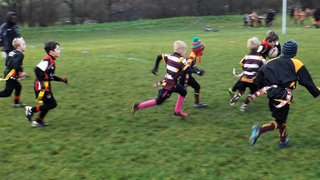 CPRUFC U8s @ Sheffield Tigers
