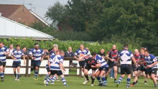 1st XV v Lowestoft - Oct 2 - 2015