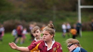 U13s Girls 8th Nov 2015 Cup Fevistal