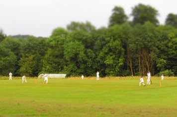 A lovely evening for a game of cricket