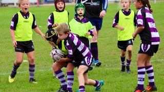 mini rugby 30.09.17
