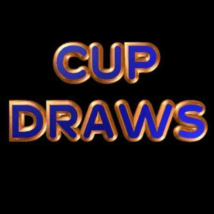 League And Supplementary Cup