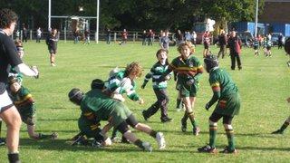 U9's York V Selby 04/10/09