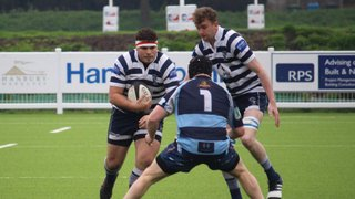 The Lions Survive to Stay in Midlands One
