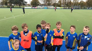 Thames Valley Minis