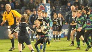 U12 - Leinster vrs Zebra ½ time game