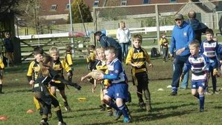 Weston v  Yatton U 8's