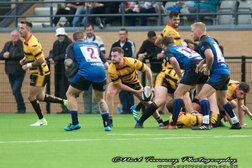 Dings down Bees in another tight game