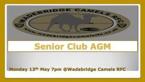 Wadebridge Camels Senior club AGM Mon 13th May @ 7pm
