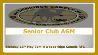 Wadebridge Camels Senior club AGM Mon 13th May @ 7pm