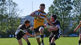 Camels v Falmouth photos now online below